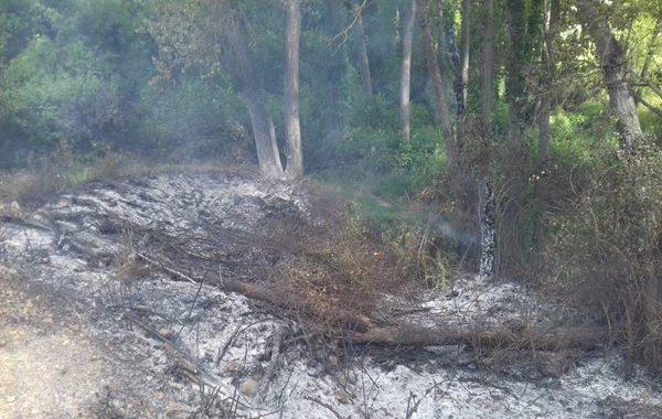 Extinguido el incencio del paraje del Arroyo Granada