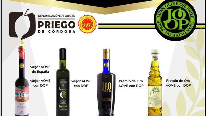 Los aceites de oliva de la DOP Priego de Córdoba triunfan en Japón