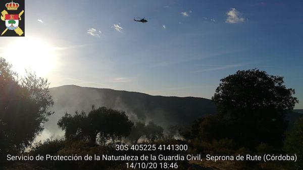 Controlado un incendio forestal en Fuente Grande