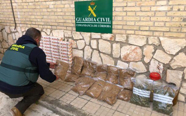 La Guardia Civil interviene 8.600 cigarrillos y 600 gramos de marihuana en Lucena y detiene a una persona por cultivo y elaboración de droga