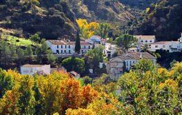 Nuevo positivo por Covid-19 en Almedinilla