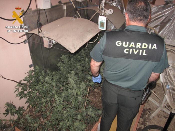 La Guardia Civil detiene a dos personas por cultivo y elaboración de droga en Cañete de las Torres