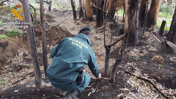 El SEPRONA de la Guardia Civil de Baena investiga a una persona como supuesta autora de un delito de incendio forestal