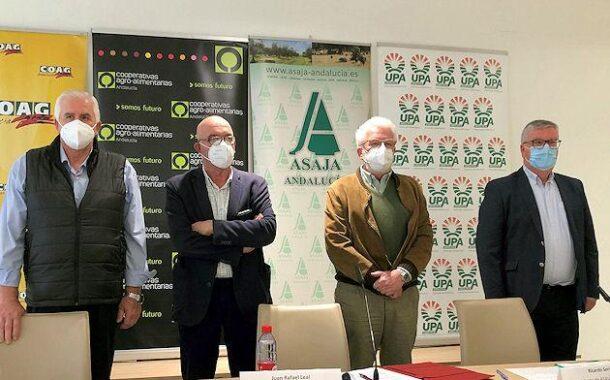 El sector agrario andaluz pide al ministro Luis Planas diálogo o dimisión