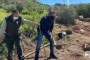 Concluyen las obras de adecuación en el aliviadero de la Fuente de Bernabé de Carcabuey