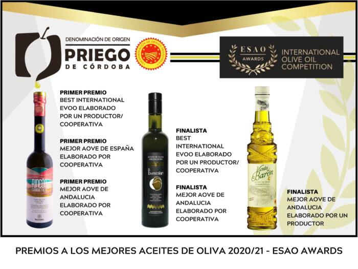 Reconocimiento a la calidad de los AOVES amparados bajo la D.O.P. Priego de Córdoba en los ESAO AWARDS