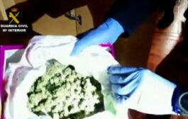 La Guardia Civil detiene en Baena a seis personas por varios delitos relacionados con el cultivo de drogas