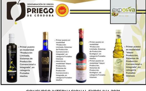 Cuatro firmas amparadas bajo la D.O.P. Priego de Córdoba, reconocidas en EXPOLIVA 2021