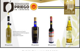 Cuatro AOVE's d la D.O.P. Priego de Córdoba en el Top100 de la Guía Evooleum