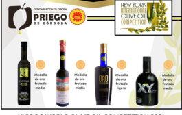 Cuatro aceites de oliva virgen extra de la DOP Priego de Córdoba, premiados en el Concurso Internacional NYIOOC