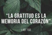Gratitud en acción