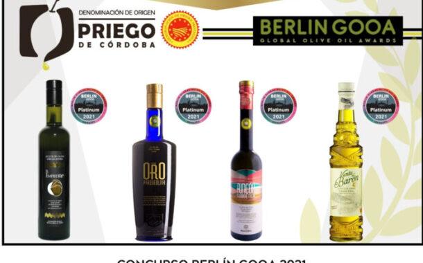 Cuatro AOVE'S de la D.O.P. Priego de Córdoba galardonados en Alemania