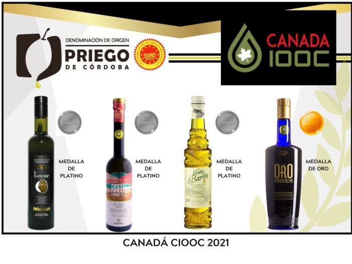 Cuatro AOVE'S amparados bajo la D.O.P. Priego de Córdoba galardonados en Canadá